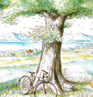 """""""湖边有棵许愿树""""的图片搜索结果"""